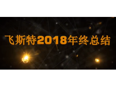 飞斯特龙8国际娱乐pt科技2018年度总结视频